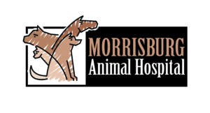 Logo of Morrisburg Animal Hospital in Morrisburg, Ontario