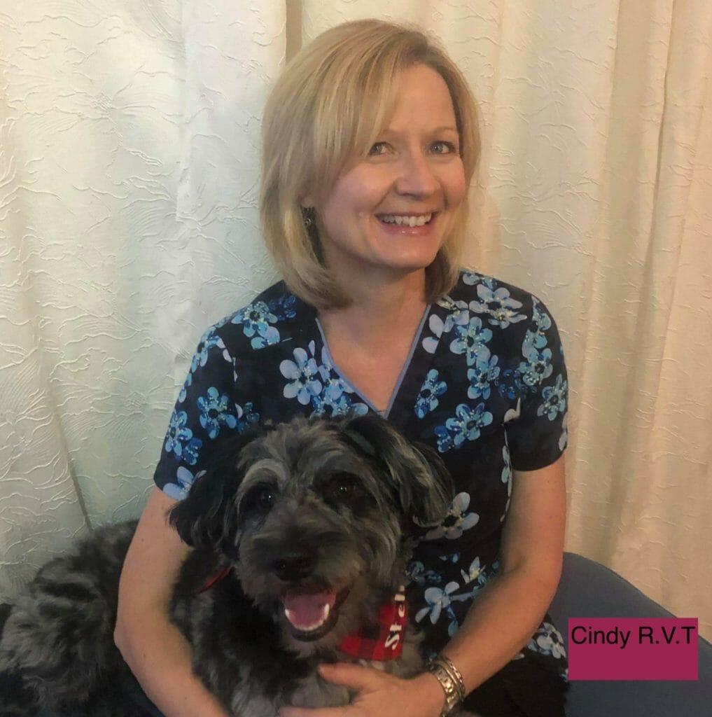 Registered vet technician holding onto black dog