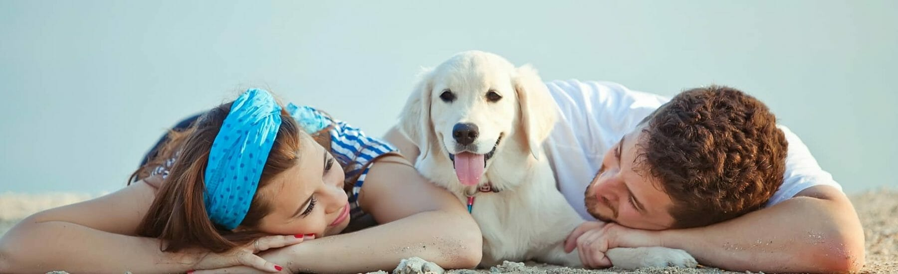 Dog laying on beach between owners